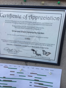 Officially helping the Monarch butterflies!